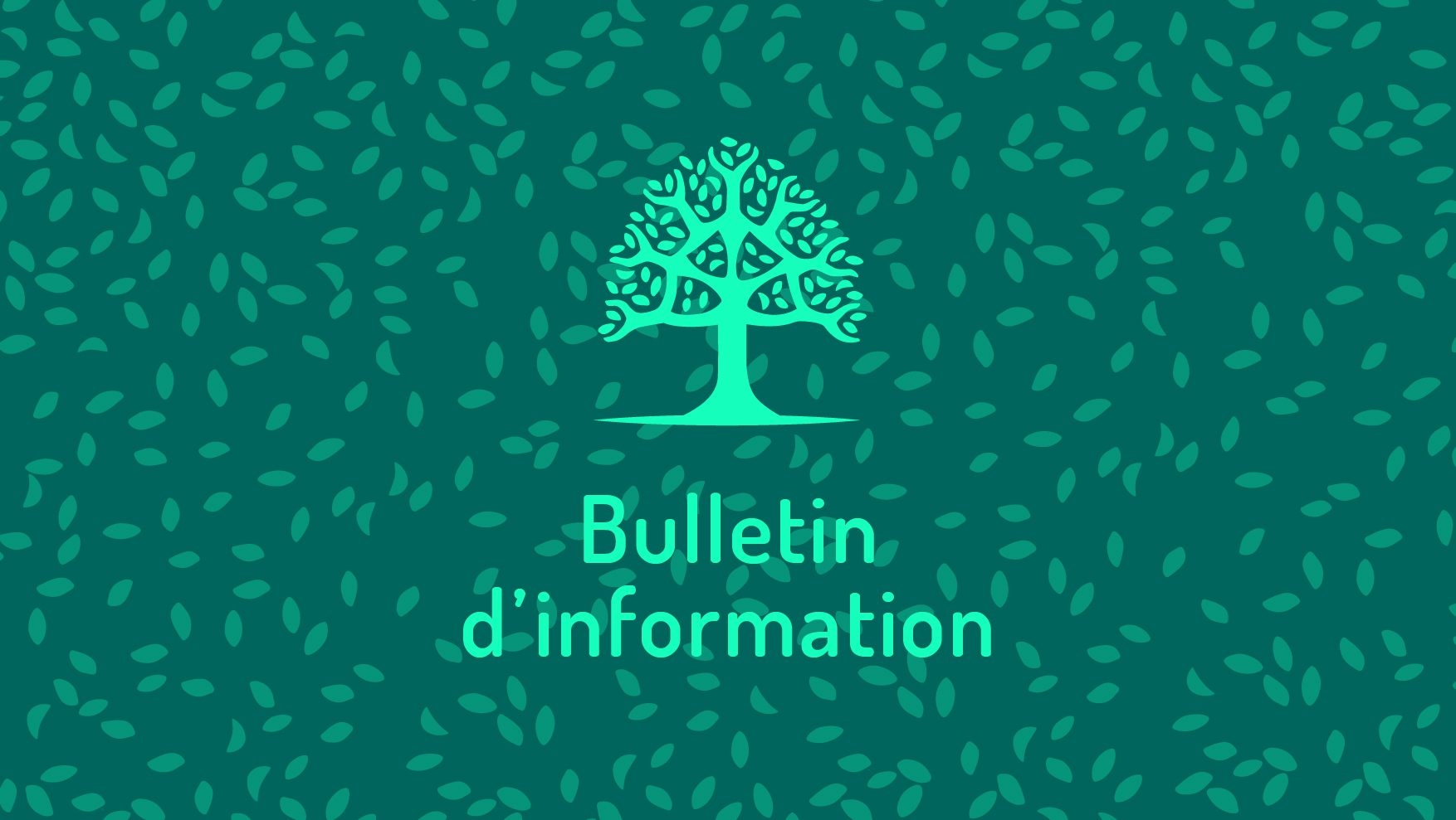 Bulletin d'information n° 1